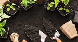 The Health Benefits of Gardening for Diabetics